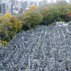 信頼の墓地・霊園